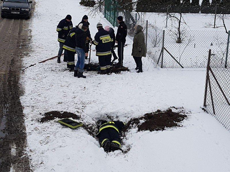 fot. UG Moszczenica