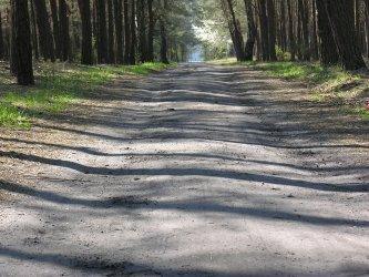 Region:  Dziś otwarcie ścieżki rowerowej w Spale