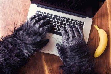 Skuteczna ochrona domeny internetowej przed przejęciem. Rejestracja znaku towarowego
