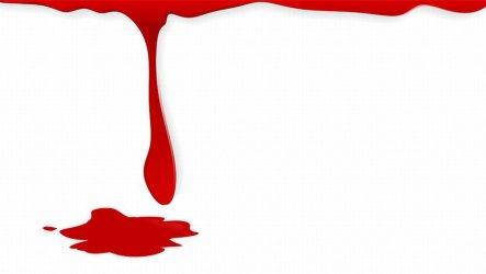 Akcje zbiórki krwi w pa¼dzierniku