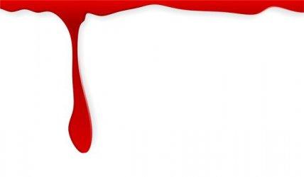 Gdzie oddać krew w marcu?