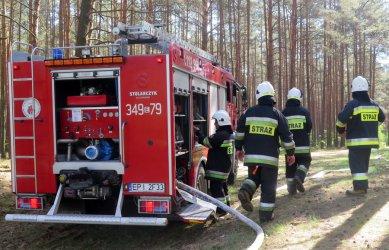 Płonie las w gminie Aleksandrów...