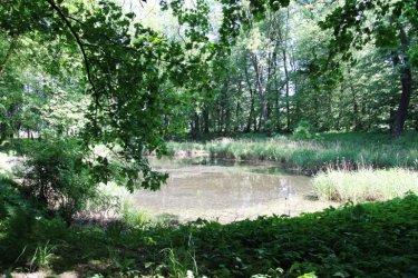 Mają prawie 2 mln dofinansowania na rewaloryzację parku w Woli Krzysztoporskiej
