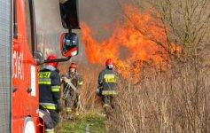 Podpalacz lasów w gminie Rozprza?