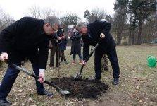 Na stulecie województwa 100 tysiêcy drzew