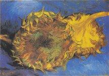 Piotrkowianka pracowa³a nad wyj±tkowym filmem o Van Goghu