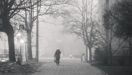 Jak walczyć ze smogiem w Piotrkowie?