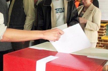 Idea nie wystartuje w wyborach z komitetu partyjnego