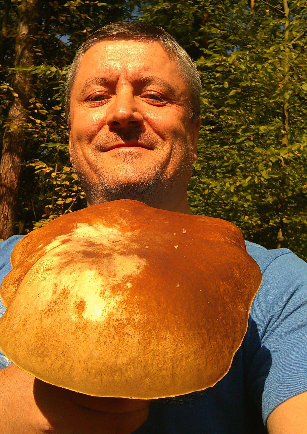 W sanepidzie sprawdzisz, czy grzyb jest jadalny