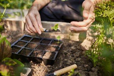 Wiosna - czas na prace w ogrodzie i w polu