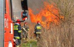 Pożar w gminie Grabica