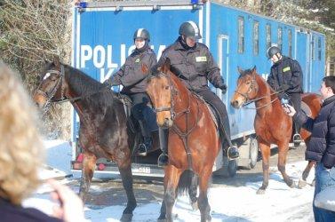 Tomaszów: Sprawdzian policyjnych koni