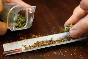 Marihuana jednak może mieć związek z twardymi narkotykami