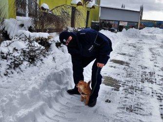 Policjanci odwiedzili piotrkowskie schronisko