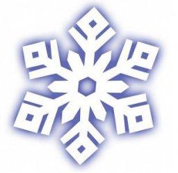 Obfite opady śniegu paraliżują okolice.