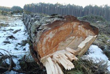 Ruszyły przygotowania do budowy obwodnicy Bełchatowa