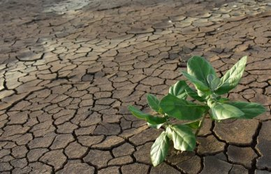 Minister rolnictwa apeluje: nie marnujmy wody, pomóżmy gospodarce i przyrodzie
