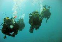 O czym warto wiedzieć przed rozpoczęciem przygody z nurkowaniem?
