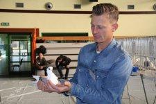 Wyjątkowe rasy gołębi w Moszczenicy