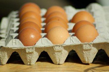 Ile naprawdę wiesz o jajkach?