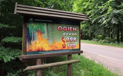 Wysokie zagrożenie pożarowe w lasach regionu