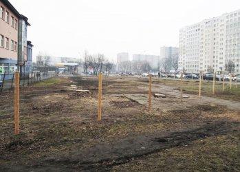 Al. Armii Krajowej: Wycięli drzewa, będą budować
