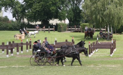 Śmietanka polskiego jeździectwa przyjechała do Bogusławic