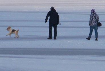 Spacerował po lodzie - uratowali go strażacy