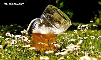 Piwo pod chmurką. Posłowie Kukiz'15 opracowali projekt ustawy