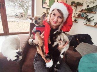 Pomagają zwierzętom cały rok - nie tylko od święta