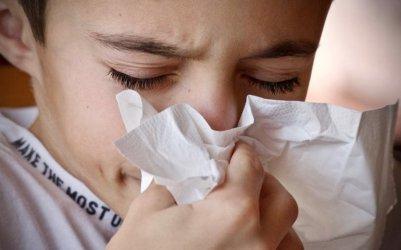 Prawie 13 tysięcy przypadków grypy w Piotrkowie i powiecie
