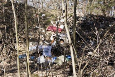 Śmieci witają wjeżdżających do Piotrkowa