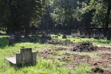 Prace porządkowe przy cmentarzu żydowskim