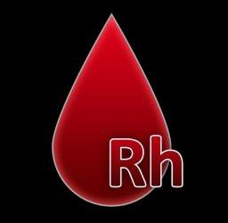 Oddasz krew, dostaniesz nagrodę. W sobotę