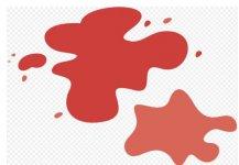 Gdzie oddać krew w lutym?