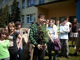 Piotrków: Zasadzili symboliczne drzewo