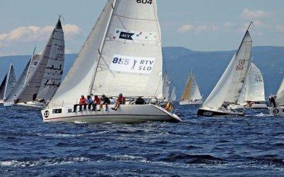 Piotrkowianin startuje w słynnych regatach