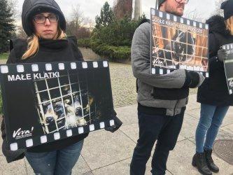 Viva! przeciwko zabijaniu zwierząt na futra