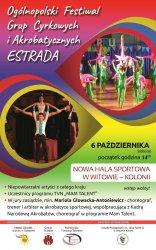 Festiwal Grup Cyrkowych w Witowie - Kolonii