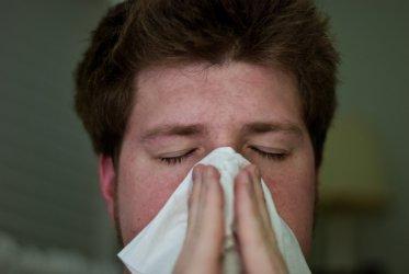 Przeziębienie czy alergia?