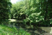 Zabytkowy park w Moszczenicy odzyska dawną świetność
