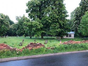 Piotrkowski cmentarz żydowski niszczeje