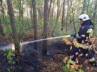 Płonący samochód na S8 i pożar w lesie
