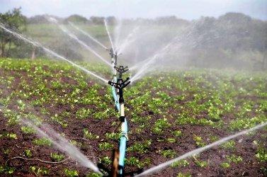 Rolniku, zabezpiecz swoje gospodarstwo przed suszą