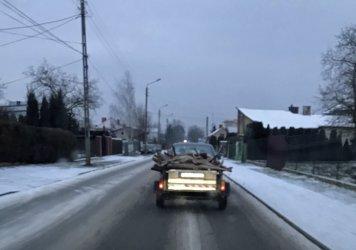 Przyczepa z martwymi sarnami na ulicach Piotrkowa [AKTUALIZACJA]