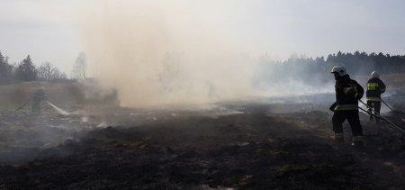 Pożary traw w gminie Gorzkowice. Codziennie