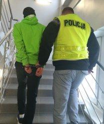 Do 10 lat więzienia za włamanie i kradzież pluszaków