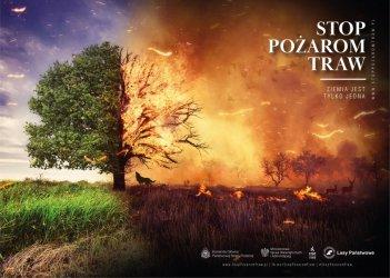 Tysiące zwierząt co roku ginie w płomieniach
