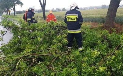 Złamany konar drzewa i zalana droga w Przygłowie