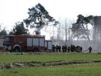 Pożar lasu i traw w Jadwinowie